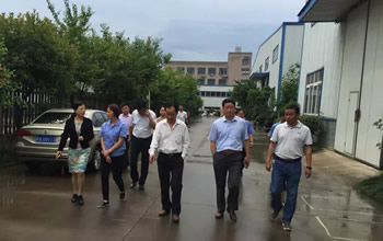The deputy secretary of Feixi County Party Committee Xuan Liling came Anhui Yufeng Company to visit and guide